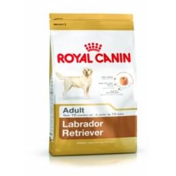 Labrador voer van Royal Canin