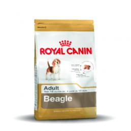 RC rashond voer beagle adult