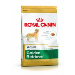 RC rashond voer golder retriever adult