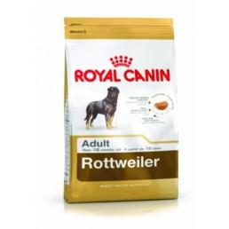 RC rashond voer rottweiler adult