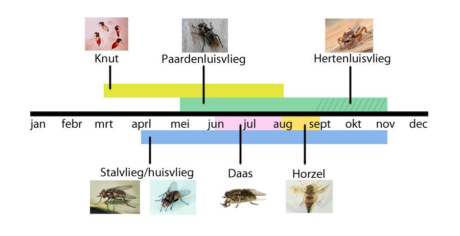 Kalender vliegen types