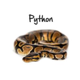 python(