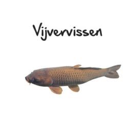 vijvervissen subpagina