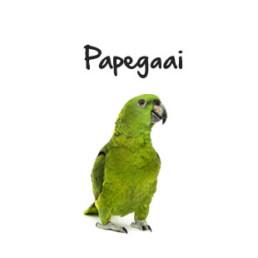 Subpagina foto's Papegaai
